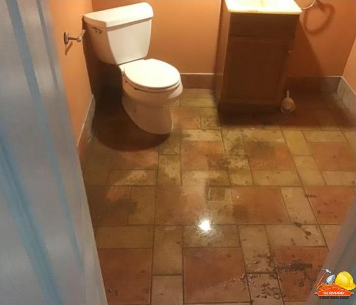 floor of bathroom covered with contaminated water from toilet back flow