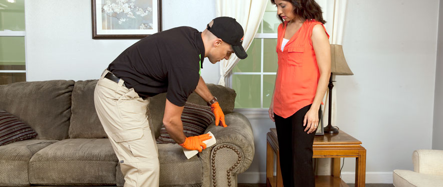 Brookline, MA carpet upholstery cleaning