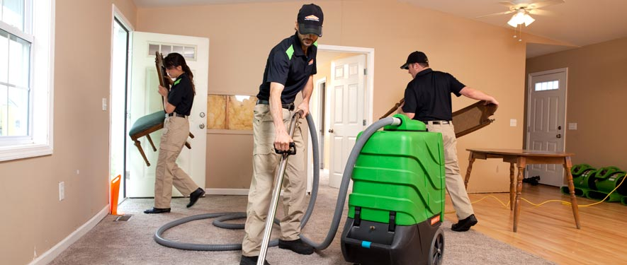 Brookline, MA cleaning services