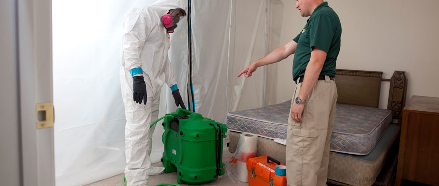 Brookline, MA mold removal process